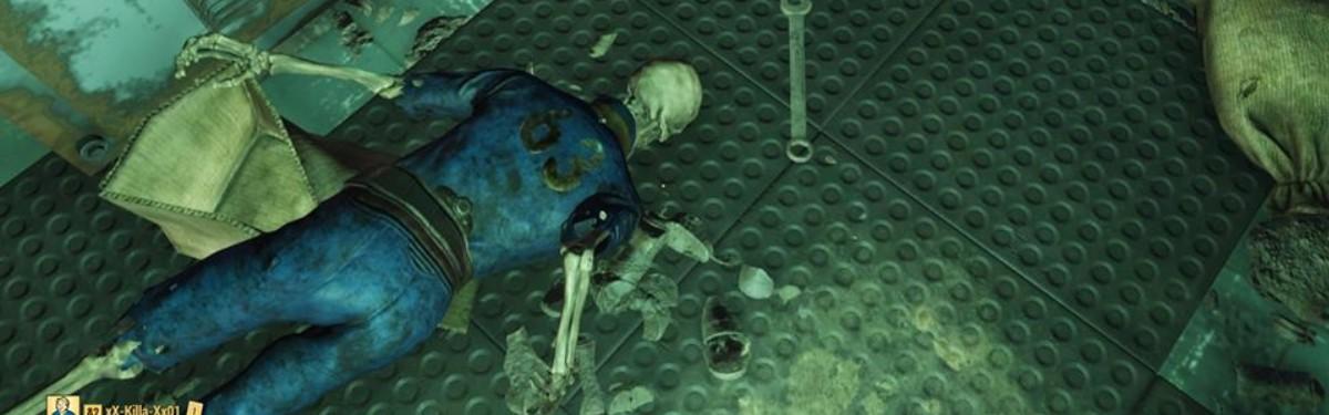 Игрок Fallout 76 случайно попал в закрытое Убежище 63. Он просит Bethesda не банить его