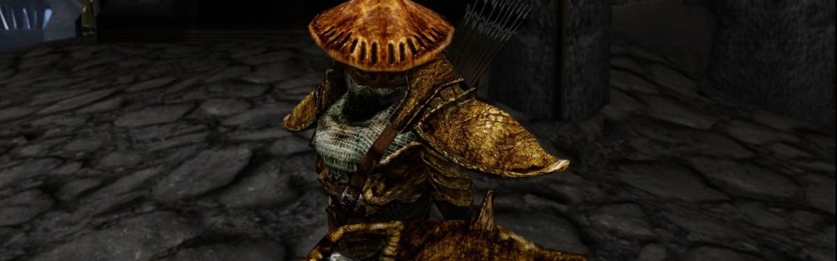 Todd Howard против ремастера Morrowind