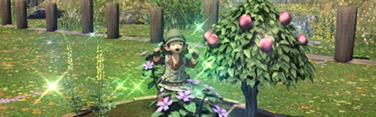 [Руководство] Копаем грядки правильно в Final Fantasy XIV