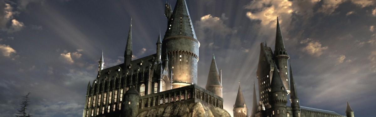 Harry Potter Magic Awakened придется подождать год - GoHa Ru