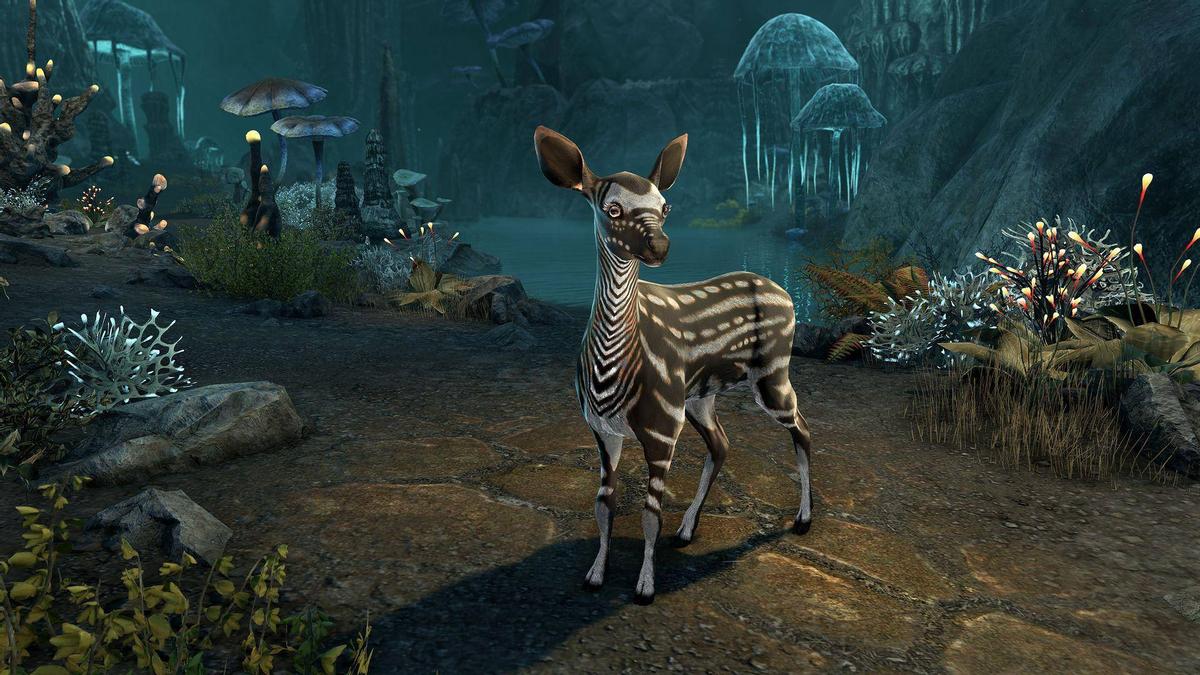 The Elder Scrolls Online - С выходом обновления 29 начнется Преображение героев