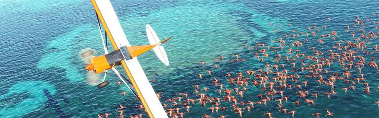 Microsoft Flight Simulator  О роли ИИ и облака в создании фотореалистичной картинки