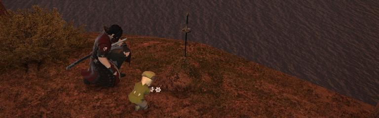 Final Fantasy XIV Online - умиротворяющая JRPG с социальной частью : Глава вторая