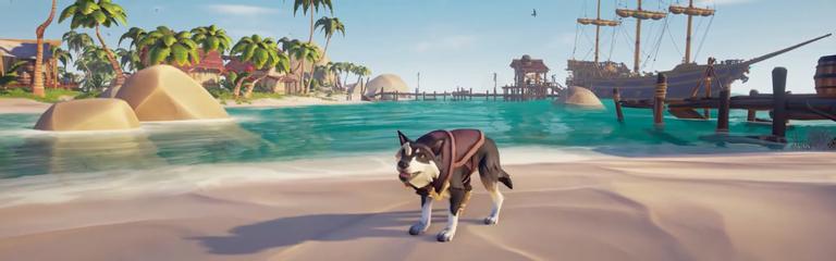 Gamescom 2020 Sea of Thieves - Сентябрьский патч добавит собак