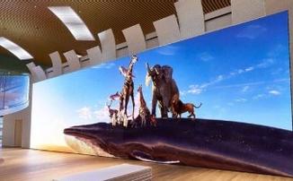Sony показала 16K экран площадью 100 кв. м
