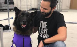 The Last of Us Part II — Маркетинг от GameStop: убийства собак и рыдающие над ними хозяева. Звоните Джону Уику