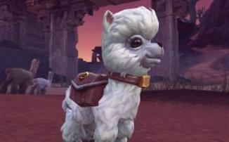 World of Warcraft — Blizzard вновь собирает деньги на благотворительность, на этот раз с Крапочкой