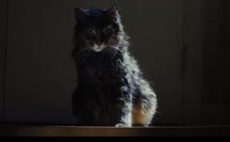 Финальный трейлер «Кладбища домашних животных»