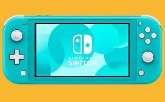 Nintendo Switch Lite – Покупатели новой консоли присоединяются к коллективному иску