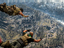 Вышла королевская битва Call of Duty: Warzone