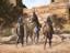 Встречайте гигантского циклопа в Assasin's Creed: Odyssey