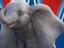 Disney готовит мир к премьере «Дамбо»
