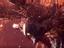"Monster Hunter: World - Четвертое обновление ""Iceborne"" получило дату релиза"