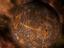 Стрим: Stellaris - Эра галактического процветания