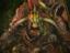 [Стрим] Total War: WARHAMMER II - Великий WAAAGH!