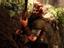 Warhammer: Vermintide 2 вышел на Xbox One