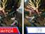 Наглядное сравнение версий Monster Hunter Rise на ПК и на Nintendo Switch в новом видеоролике