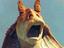 На Disney+ выйдет шоу, в котором Джа-Джа Бинкс будет делать из детей рыцарей-джедаев