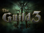 The Guild 3
