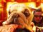 [Слухи] В «ВандаВижен» зрители увидят Эвана Питерса - Ртуть из «Людей Икс»