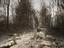 Сеть сходит с ума из-за Abandoned - потенциальной Silent Hill от Кодзимы. Шрайер и Кили тоже присоединились
