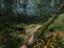 Green Hell - Суровые тропики ждут