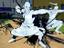 Naruto to Boruto: Shinobi Striker - Датамайнинг DLC