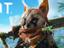 Biomutant - Первое обновление внесет много правок на основе отзывов игроков