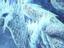 """Monster Hunter: World - Вышел новый патч с исправлениями для """"Iceborne"""""""