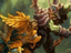 "Стрим: World of Warcraft Classic - Трансляция с ""ИгроМир 2019"""