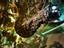 EVE Online — 26 неделя войны: более 1 миллиона долларов потерь и самая дорогая битва в индустрии