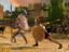Total War Saga: Troy - Стали известны системные требования