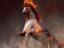 Black Desert Online: Трейлер, демонстрирующий огненного коня «Doom»
