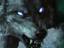 """Гвинт: Ведьмак. Карточная игра - Сезон """"Волка"""" привнес карту Мадука"""