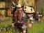 [Руководство] DarkFall: New Dawn - Бинды, хотбары и веапонбары