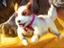"""Magic: The Gathering - Настольный вариант формата """"Jumpstart"""" выйдет в октябре"""