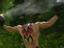 В Serious Sam 4: Planet Badass вас встретят огромные толпы противников