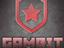 CEO Gambit вновь ответил на вопросы о CS:GO-составе и будущем организации
