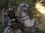 [Стрим] The Elder Scrolls Online - Остановка в Тамриэле