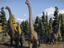 [gamescom 2021] Jurassic World Evolution 2 — Новый геймпленый трейлер со специальным гостем Джеффом Голдблюмом