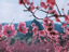[Обзор] Total War: Three Kingdoms - летающие китайцы встречают Crusader Kings II