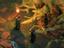 [Стрим] Pillars of Eternity 2: Deadfire - Гарро Десятый пока еще жив
