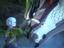 [E3 2021] Monster Hunter Stories 2: Wings of Ruin - Представлен новый трейлер сиквела