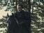 Нильфгаард во втором сезоне «Ведьмака» предстанет в новых доспехах. Есть фото с Кагыром
