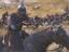 [gamescom 2019] Mount and Blade II: Bannerlord дата раннего доступа и новый трейлер