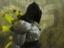 Warhammer 40,000: Inquisitor - Martyr - Субсектор Триглав открыт для посещений