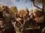 Assassin's Creed Valhalla - Стала доступна функция трансмогрификации