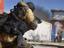 Call of Duty: Modern Warfare - Началась предзагрузка альфа-версии