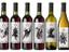 Ubisoft и Lot18 выпустили вино в стиле Assassin's Creed
