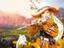 Black Desert Console — Поддержка Xbox Series X/S и PlayStation 5 будет в день их релиза